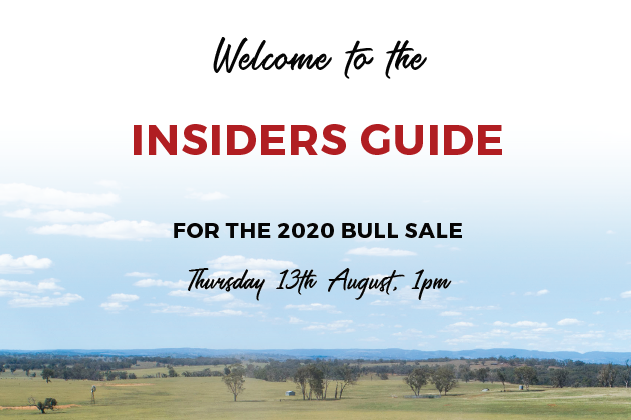 Insiders Guide cover